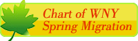 button link to WNY Spring Bird Migration Chart